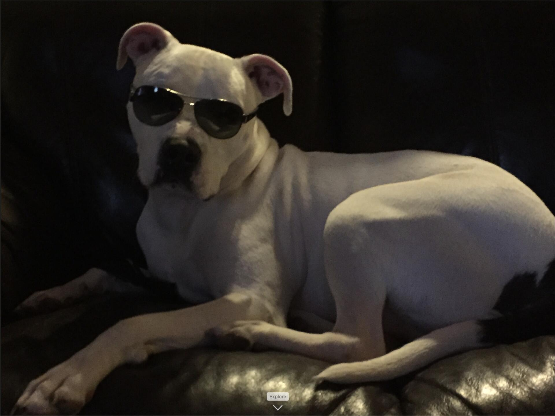 Ted looking cool